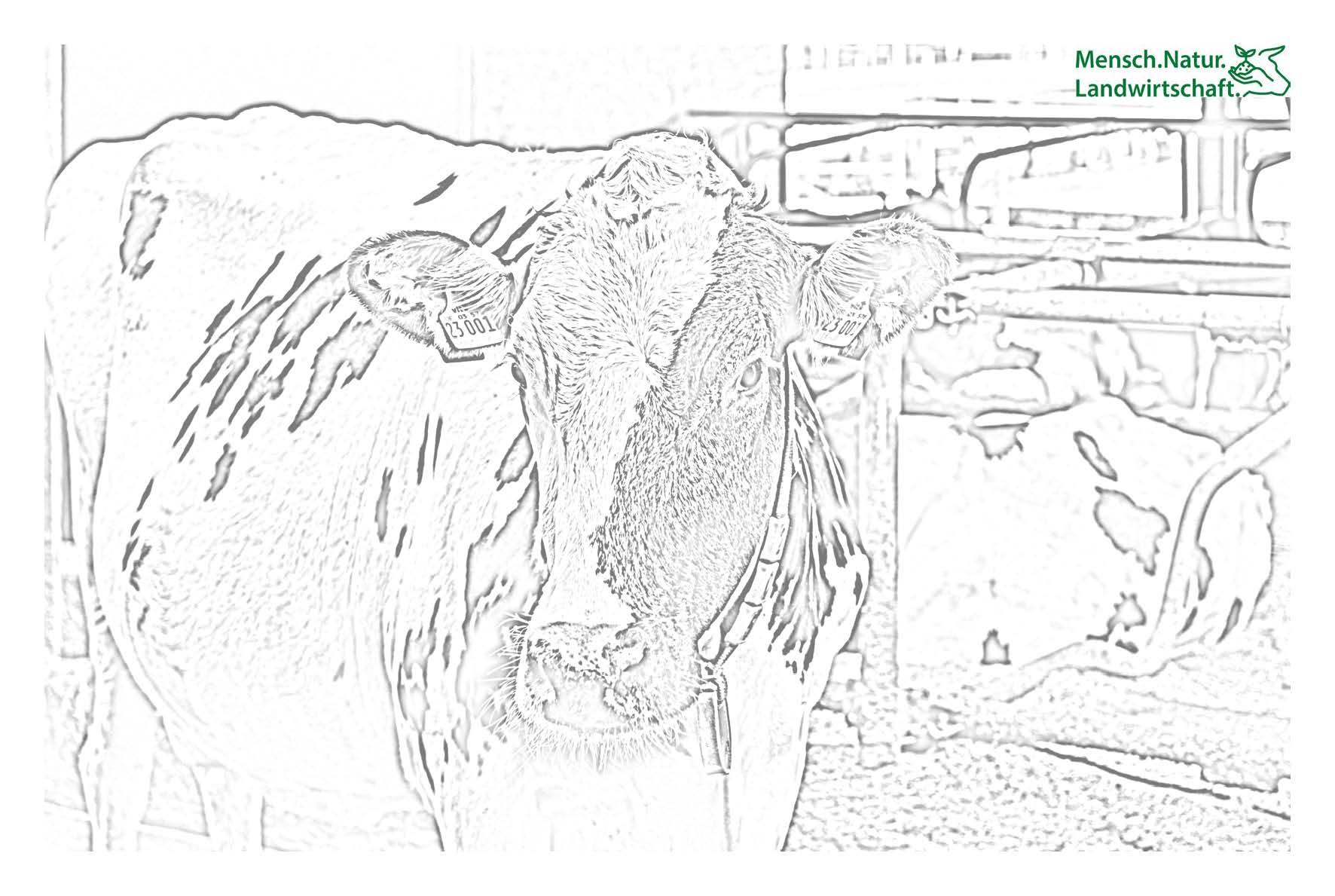 natur und landwirtschaft ausmalen  menschnatur